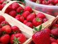 Food_Strawberry.JPG