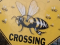 Impressions_Bees.JPG